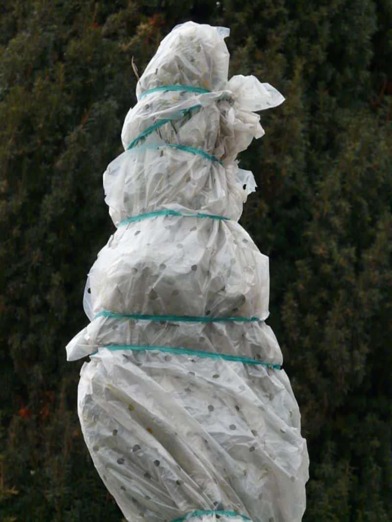 ways-to-protect-your-garden-against-snow-and-ice-damage-4-wrap-them-up