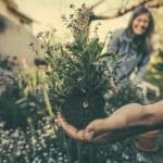 12 Reasons why Gardening is good for you