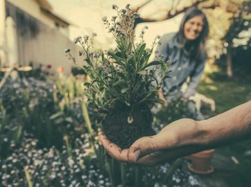 11 Reasons why gardening is good for you